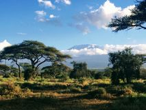 Vista del Kilimanjaro dal parco nazionale di Amboseli nel Kenya fotografie stock
