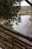 Vista del lago Foto de archivo