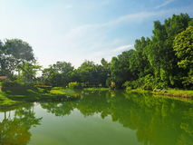 Vista del lago Fotografia Stock Libera da Diritti
