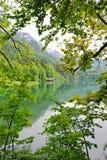 Vista del lago Alpsee in Germania Fotografia Stock Libera da Diritti