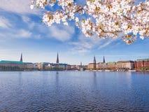 Vista del lago Alster a Amburgo Fotografia Stock