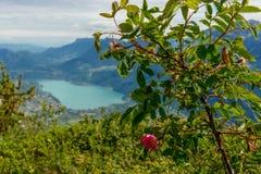 Vista del lago Annecy Immagini Stock Libere da Diritti