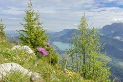 Vista del lago Annecy nelle alpi francesi Fotografia Stock Libera da Diritti