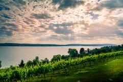 Vista del lago Coblenza dal tedesco Immagine Stock