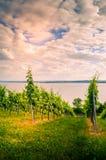 Vista del lago Coblenza dal tedesco Immagini Stock