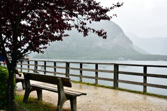 Vista del lago con la sedia vuota Fotografie Stock Libere da Diritti