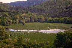 Vista del lago Doberdo Fotografía de archivo