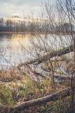 Vista del lago en otoño Imágenes de archivo libres de regalías