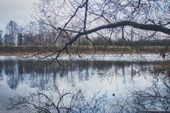 Vista del lago en otoño Fotografía de archivo