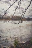 Vista del lago en otoño Fotografía de archivo libre de regalías