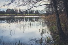 Vista del lago en otoño Fotos de archivo