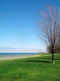 Vista del lago en resorte temprano Foto de archivo libre de regalías