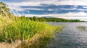 Vista del lago en verano imagen de archivo