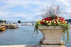 Vista del lago Lemano, Svizzera con i fiori nella priorità alta Immagini Stock Libere da Diritti