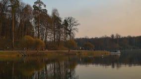 Vista del lago nel parco della citt? stock footage
