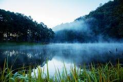 Vista del lago nella mattina fotografia stock