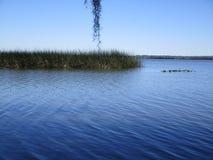 Vista del lago Newnan la Florida imagen de archivo libre de regalías