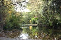 Vista del lago, parque del utumn del  de Ð, Dublín Fotografía de archivo