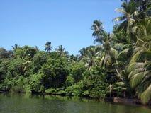 Vista del lago Ratgama nello Sri Lanka Fotografie Stock