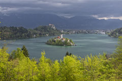 Vista del lago sanguinata da poca collina di Osojnica, Slovenia Immagine Stock
