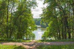Vista del lago a través de los árboles en el parque de Tsaritsyno en verano Imagen de archivo