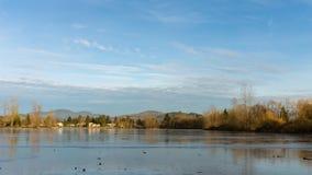 Vista del lago urbano congelado Foto de archivo libre de regalías