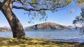 Vista del lago Wanaka in Nuova Zelanda immagini stock libere da diritti