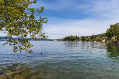 Vista del lago zurich Immagine Stock Libera da Diritti