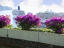Vista del lungomare con le navi da crociera a Funchal sull'isola del Madera nell'Oceano Atlantico immagine stock libera da diritti