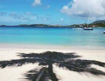 Vista del mar dei Caraibi con l'ombra del cocco Fotografia Stock Libera da Diritti