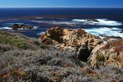 Vista del mare ad un azionamento da 17 miglia in Big Sur di Monterey Fotografie Stock