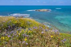 Vista del mare azzurrato dall'alta riva Immagini Stock
