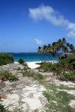 Vista del mare delle Barbados Fotografia Stock