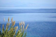 Vista del mare interno del ‹Corfù del †del ‹del †con le coste dell'Albania come fondo fotografia stock libera da diritti