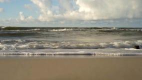 Vista del mare, onde video d archivio
