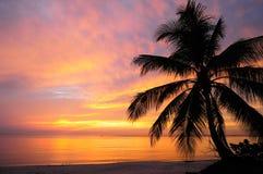 Vista del mare prima di alba Fotografie Stock Libere da Diritti