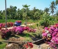 Vista del mercado de la flor en Can Tho, Vietnam Imagenes de archivo