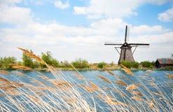 Vista del mulino a vento di arrogation dell'acqua in Olanda Fotografia Stock