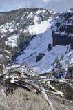 Vista del nido di Eagle dalla montagna di Darland, cascate, vicino a Tampico, WA immagine stock