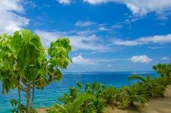 Vista del océano de South Pacific de la orilla Imagen de archivo