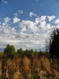 Vista del otoño en la región de los lagos finger de NYS Imagen de archivo