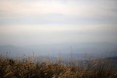 Vista del paesaggio Immagine Stock