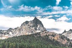 Vista del paesaggio con le montagne ed il legno Fotografia Stock