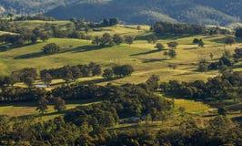 Vista del paesaggio del parco nazionale blu delle montagne Fotografie Stock Libere da Diritti