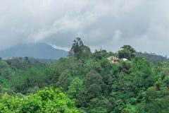 Vista del paesaggio della foresta pluviale alla montagna Isola tropicale Bali, Indonesia di paradiso Immagine Stock