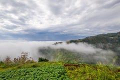 Vista del paesaggio della montagna dell'isola del Madera dall'aumento della nova di Levada Immagine Stock