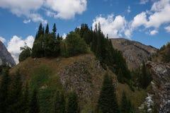 Vista del paesaggio della montagna nel Kirghizistan Erba verde nella vista della valle della montagna Panorama della montagna immagine stock