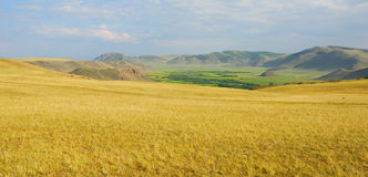 Vista del paesaggio della steppa di autunno Immagine Stock