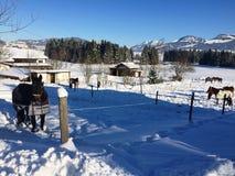 Vista del paesaggio di inverno sopra le alpi, montagne nevose, natura coperta di neve al tramonto di inverno St Moritz le alpi sv Fotografie Stock