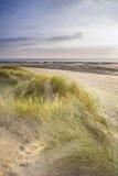 Vista del paesaggio di sera di estate sopra le dune di sabbia erbose sulla spiaggia Fotografie Stock Libere da Diritti